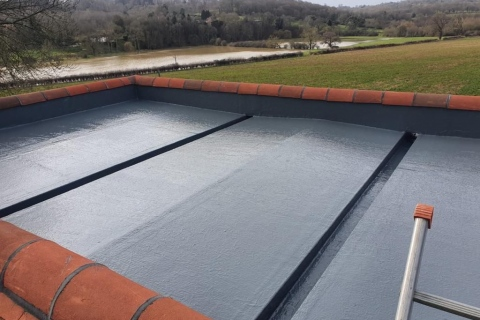 Liquid & Singly Ply Roofs