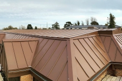 VM Zinc Pigmento Brown - Haywards Heath